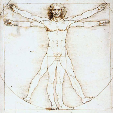 55.1.bearbeitet.Ausschnitt-Leonardo_da_Vinci-_Vitruvian_Man Kopie 2