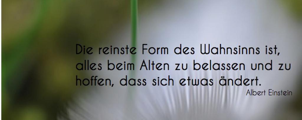 65.1Einstein-Feder